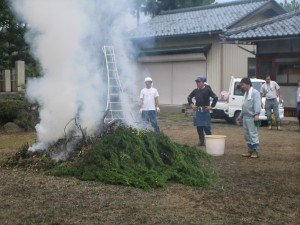 集めた枝は燃やしていきます。