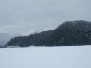 正月は雪が積もりました。